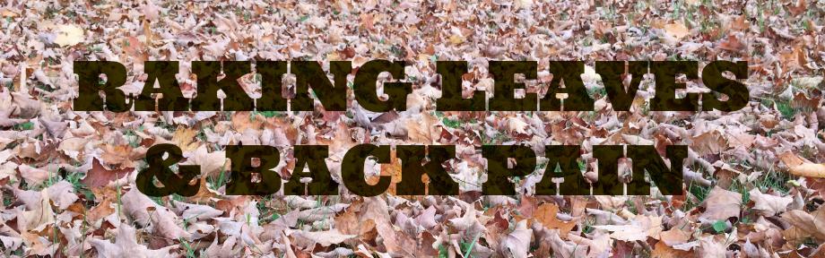 rake leaves chiropractic